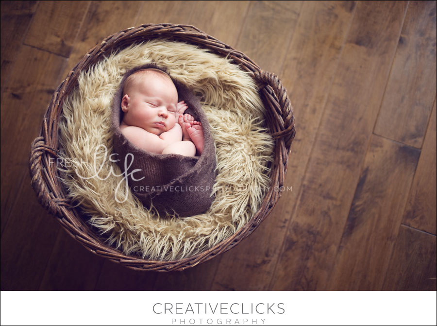 Niagara Newborn Baby Photography