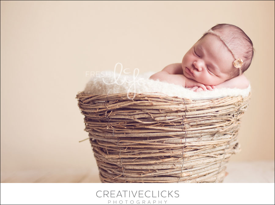 Newborn Photography Beamsville Photographer
