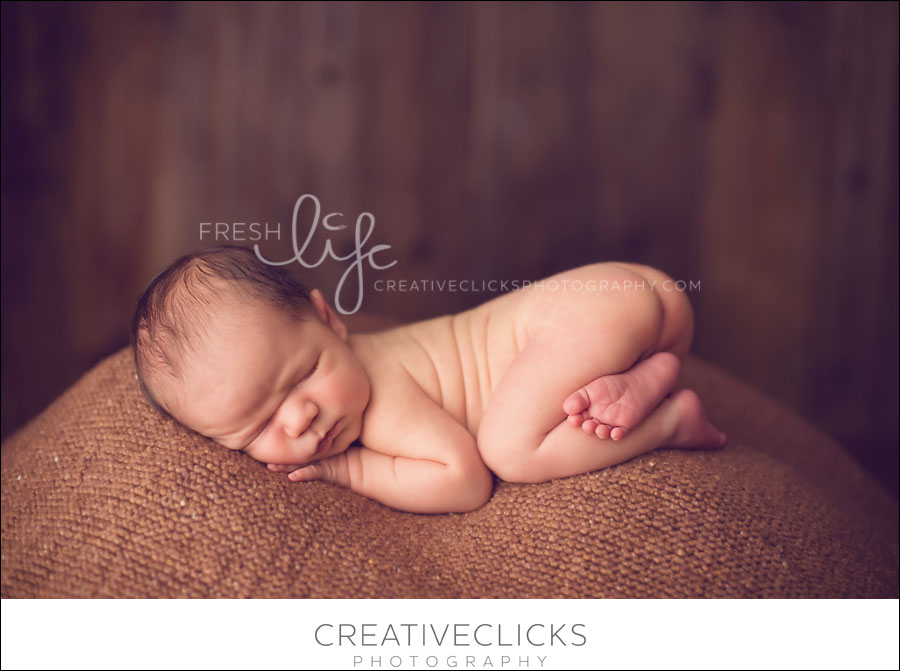 Niagara Newborn Photography