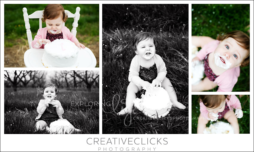Beamsville Cake Smash Photographer