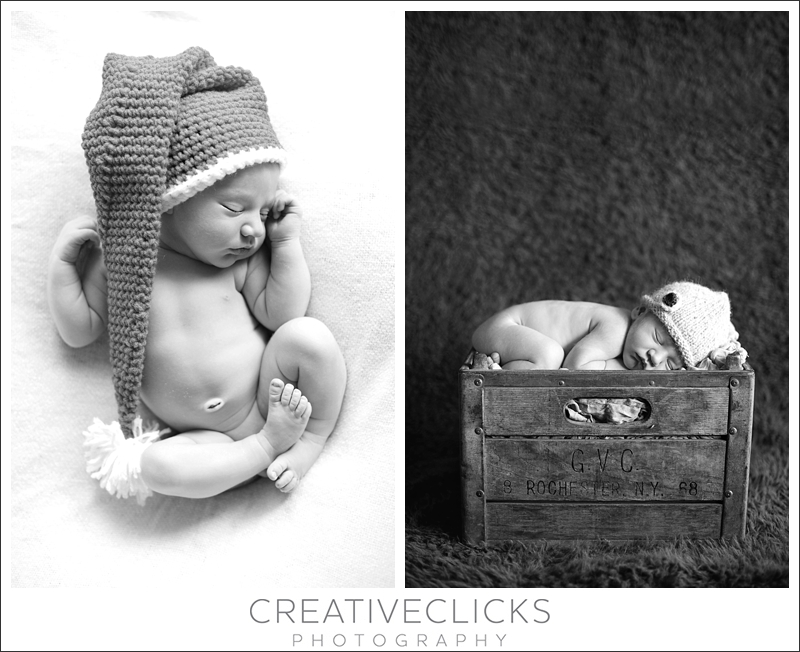 Christmas Baby Portraits