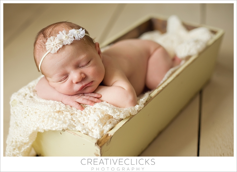 Niagara Newborn Portrait Photography