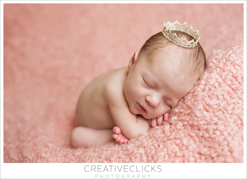 Award Winning Newborn Photography Niagara