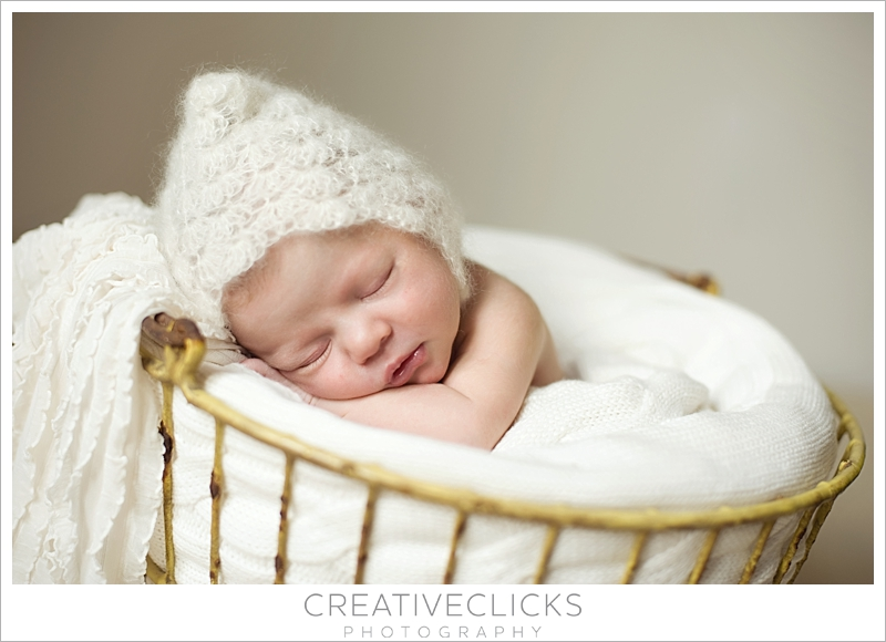 Newborn Sleeping Posed Photography