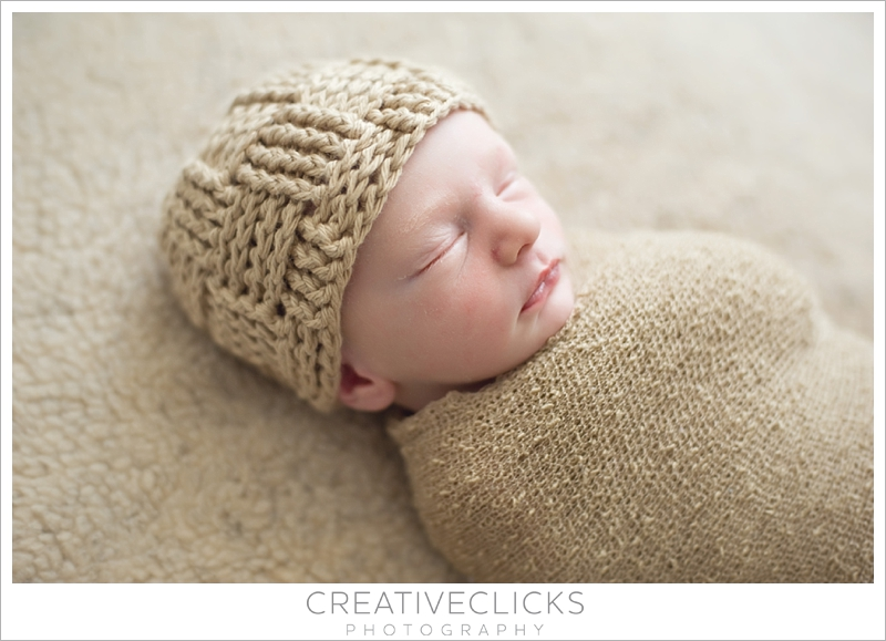 Beautiful Baby Boy Wrapped Neutral Soft Colors Organic Photography